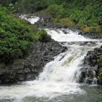 One of many beautiful waterfalls on the Road to Hana, Maui