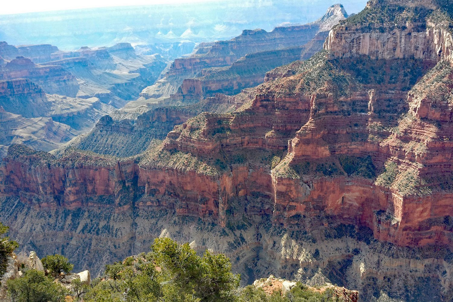 Canyon road trip takes you to Grand Canyon North Rim, Arizona