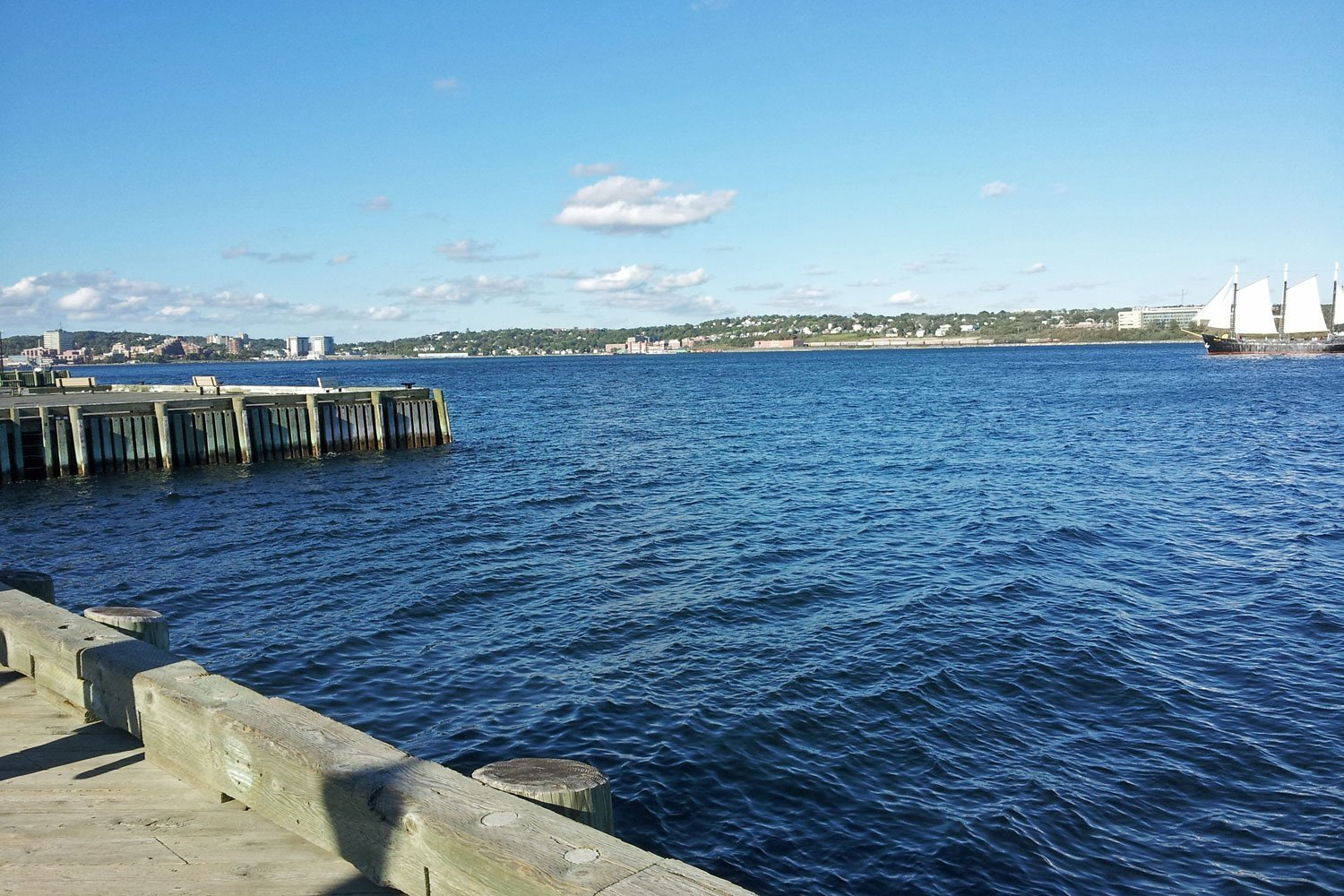 Watch the ships and sailboats in Halifax Harbour from its wooden boardwalk