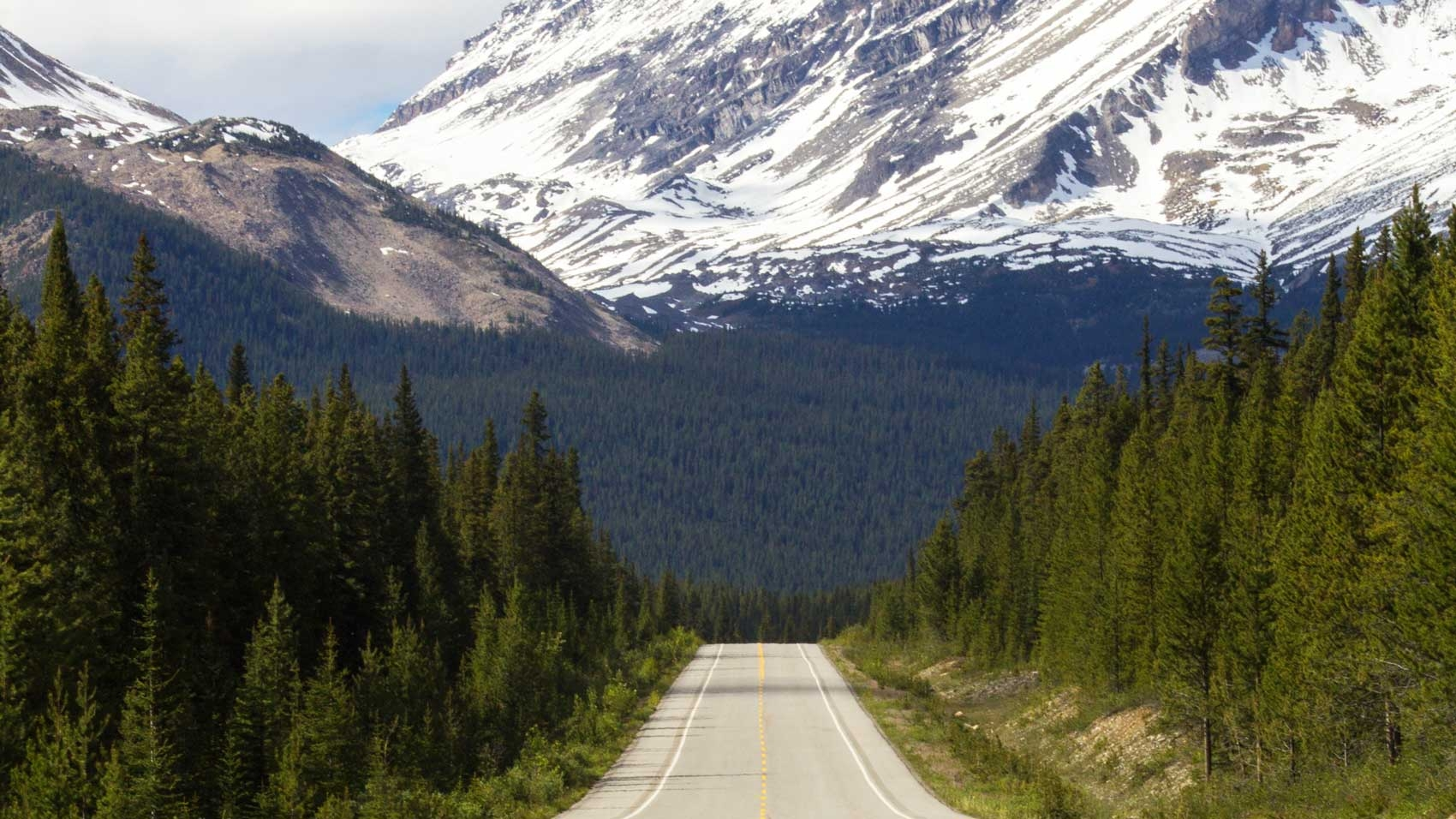 Highway heads straight towards majestic snowy mountains, surrounded by thick forests