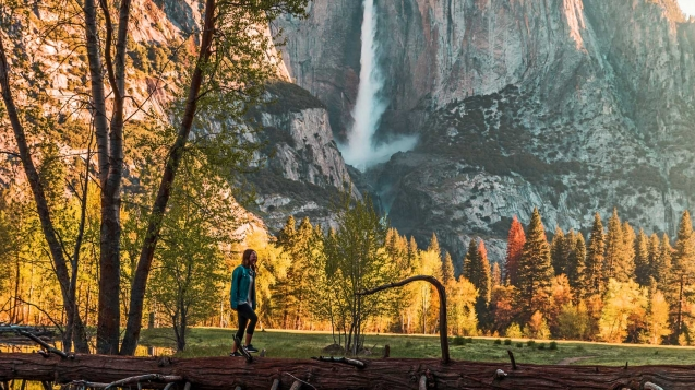 Walk through Yosemite National Park's virtual tour