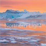 Book cover of Northern Light by Brosha