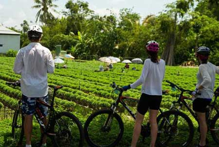 Cycling Vietnam countryside, Christmas vacation ideas for couples, Intrepid Travel