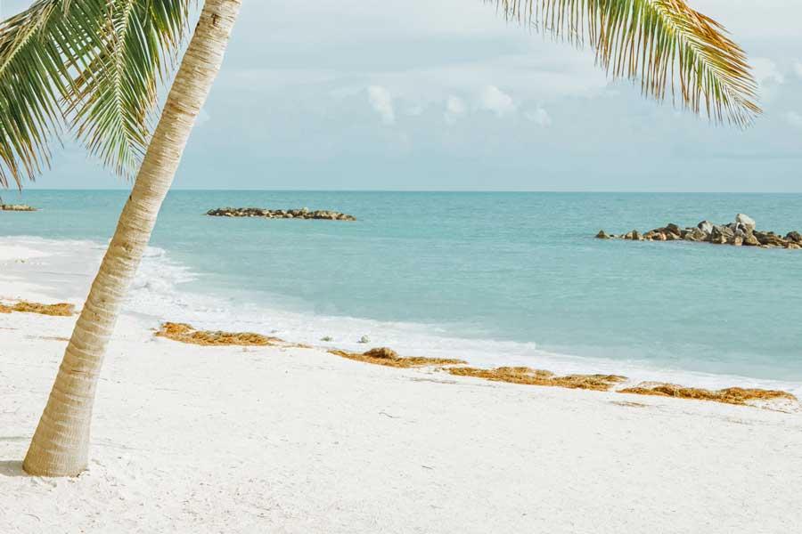 White sand at Key West Florida beach, Disney cruise Bahamas