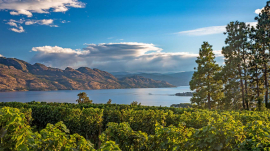 BC romantic getaways, beautiful British Columbia Canada vineyard and Okanagan Lake