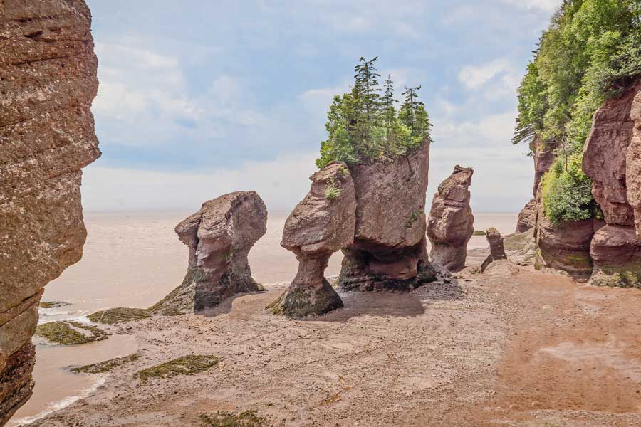 Hopewell Rocks in New Brunswick, East Coast road trip Canada from Toronto to Nova Scotia
