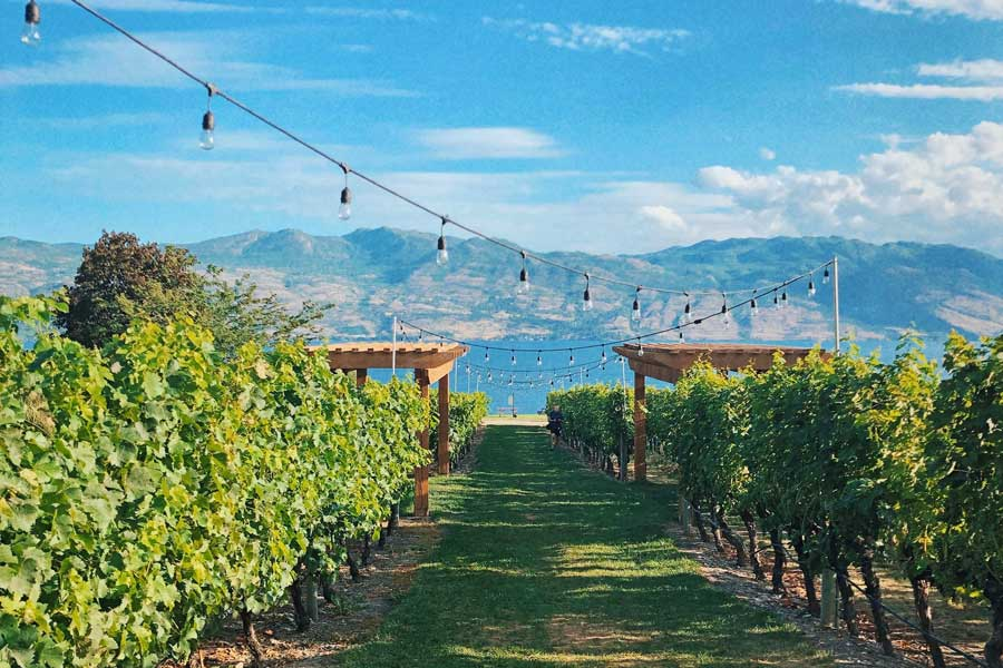 Okanagan Valley Lake and winery, best trips with mom Canada, places to go for mother daughter trips
