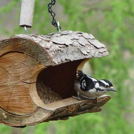 Bird feeder, outdoor decor items for travel lovers
