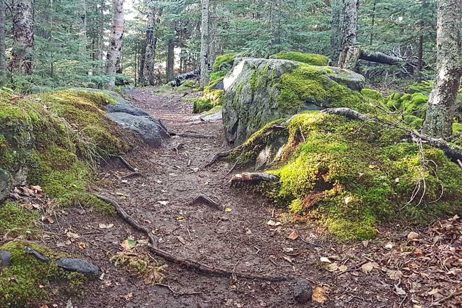 Tee Harbour Trail, Sleeping Giant hiking trails near Thunder Bay Ontario